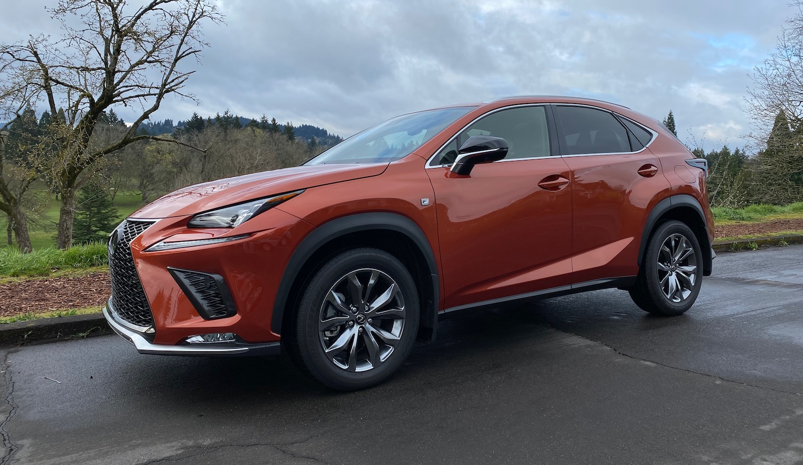 2020 lexus nx review: the avant-garde small suv | the